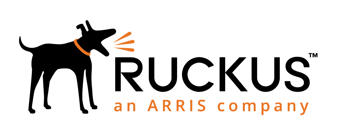 Ruckus Solution Partner logo